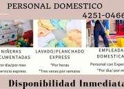 Servicios domesticos-disponibilidad inmediata
