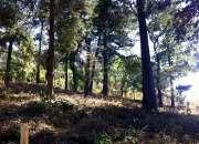 Vendo Terreno en San José Buena Vista, Santa Lucia Milpas Altas, Sacatepéquez